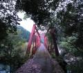 伊尾木森林鉄道