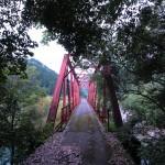 《高知》伊尾木の森林鉄道跡