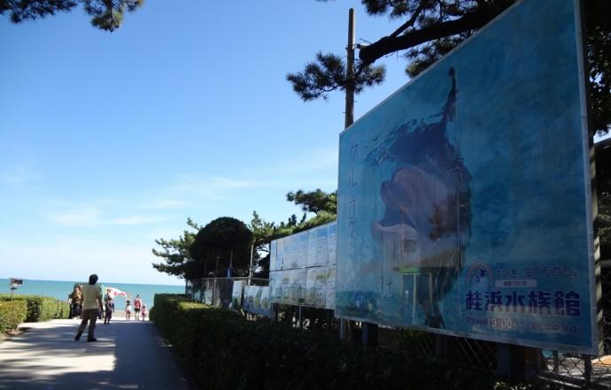 桂浜水族館