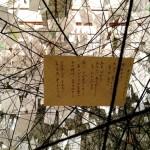塩田千春-ありがとうの手紙展