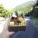 [ミニレポート]本川あけぼの弁当