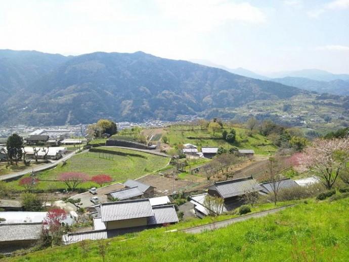 徳島県三好市にて撮影