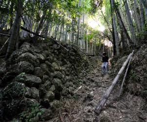 高知 朝倉城