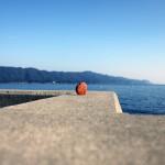 徳島県牟岐町の沖にある風情ある島「出羽島」