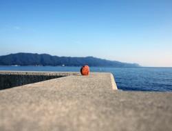 出羽島08
