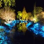 《高知》光のフェスタinモネの庭