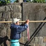 《徳島》冬の到来を告げる「ウツボの天日干し」は牟岐町の風物詩