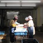 《徳島》無添加干物を作るおばちゃんたちの光景