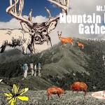 四国のど真ん中!剣山の秘めたる霊性の祭典「Mt. TSURUGI Mountain High Gathering」開催!