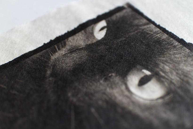 storyofplatiumprintpaper08