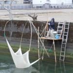《徳島》春が来た!椿川ヒウオ漁
