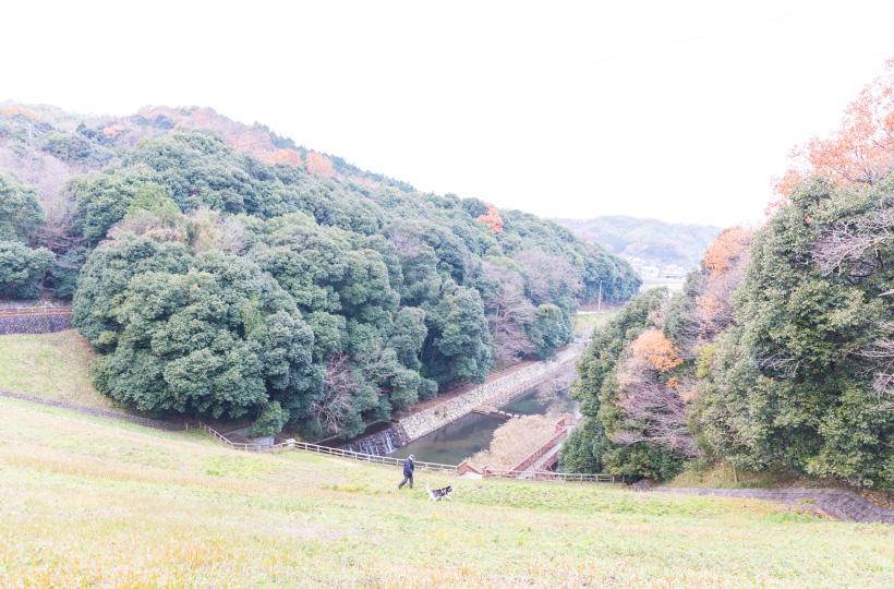 下に見えるのが樋門とほたる見公園