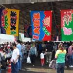 《徳島》5月4日は阿南市椿泊のぎょぎょぎょ祭りへ!!