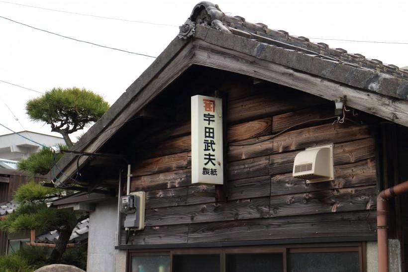udaseishijo56