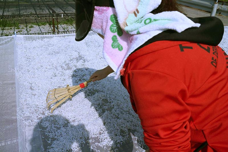 tosakakuhirokaisan12