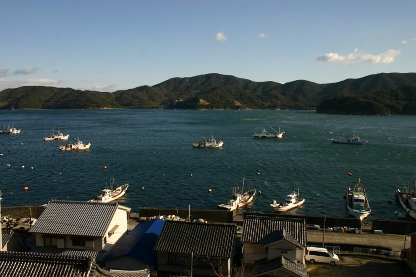 椿泊湾を挟んで、手前が椿泊、向こうが蒲生田岬